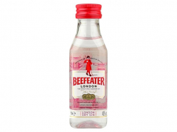 Beefeater Gin 必富達毡酒 40% 5CL